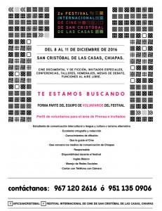 voluntarios festival de cine