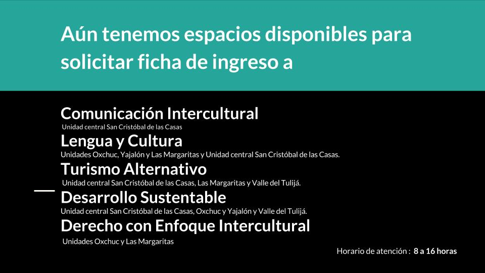 Fichas4