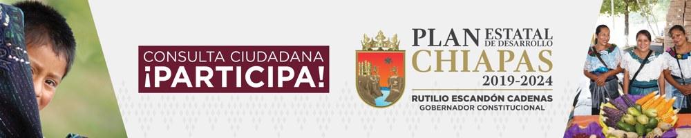 Consulta Ciudadana PED