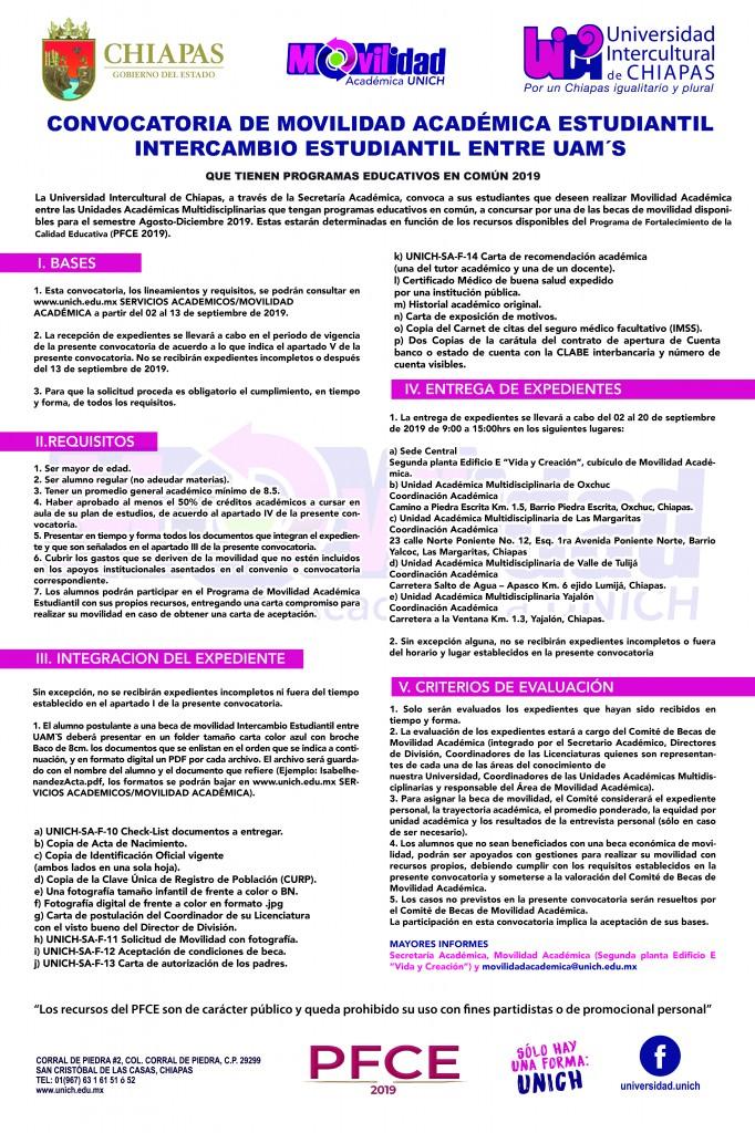 convocatorianu2019-02